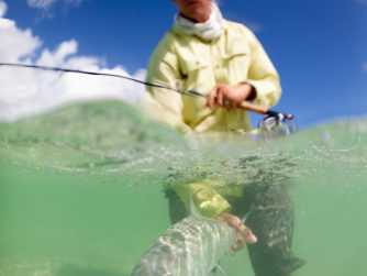 Fly Fishing in the Bahamas - Release