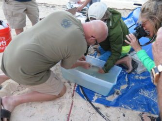 Conservation Program in the Bahamas